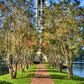 Sounds Of Victory The Bell Tower Furman University Greenville South Carolina Art by Reid Callaway