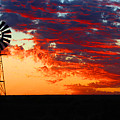 South African Sunrise by Elton Oliver