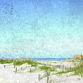 South Carolina Beach by Guy Crittenden