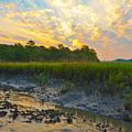 South Carolina Summer Sunrise by Margaret Palmer