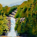 South Carolina Waterfall by Jerry Walker
