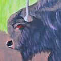 South Dakota Bison by Warren Thompson