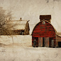 South Dakota Corn Crib by Julie Hamilton