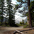 South Lake Tahoe Mountain Trail by LeeAnn McLaneGoetz McLaneGoetzStudioLLCcom
