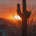 South Mountain by Robert Photography