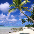 South Pacific by Steve Williams