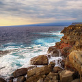 South Point Sea Cliffs by Susan Rissi Tregoning