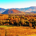 South Reno In Fall by Nancy Marie Ricketts