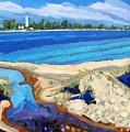 Southampton Dunes by Phil Chadwick