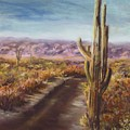 Southern Arizona by Jack Skinner