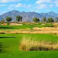 Southern Dunes Golf Club - Hole #14 by Scott Carda