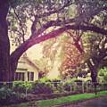 Southern Home #house  #coastalbeauty by Joan McCool