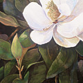 Southern Magnolia by Jimmie Trotter