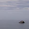 Southern Oregon Coastal View by Alexander Fedin
