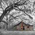 Southern Past Ll by Elizabeth Reynders