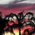 Southwest Sunset by Jamie Ramirez