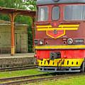 Soviet Era Train In Haapsalu Estonia by Greg Matchick