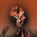 Space Cacti by Jason Girard