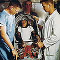 Space: Chimpanzee, 1961 by Granger