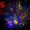 Space Flower by Julia Bagryanskaya