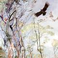 Span - Black Eagle by Sasitha Weerasinghe