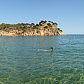 Spanish Beach Seascape by Gregory Dyer