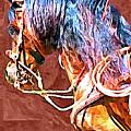 Spanish Horse by Lynn A Marie