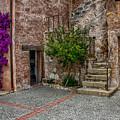 Spanish Mission's Back Entrance.  by Patrick Boening