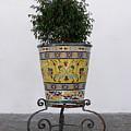 Spanish Planter by Brett Winn