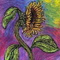 Spanish Sunflower by Sarah Loft