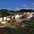 Spanish Terraces by Anthony Dezenzio