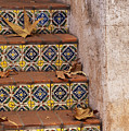 Spanish Tile Stair  by Sandra Bronstein