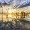 Sparkley Waters by Debra and Dave Vanderlaan