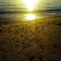 Sparkly Beach Sunset   by Grant Bolei