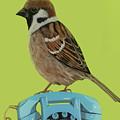 Sparrow Perched On Vintage Telephone by Jackie Besteman