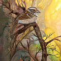 Sparrow by Sherry Shipley