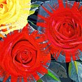 Spattered Colors On Roses by Don Evans