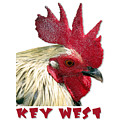 Special Edition Key West Rooster by Bob Slitzan