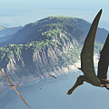 Species From The Genus Anhanguera Soar by Walter Myers