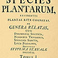 Species Plantarum, Linnaeus, 1753 by Science Source