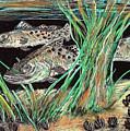 Specks In The Grass by Robert Wolverton Jr