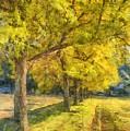 Spectacular  Fall Foliage Pencil  by Edward Fielding