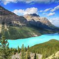 Spectacular Peyto Lake by Teresa Zieba