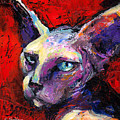 Sphynx Sphinx Cat Painting  by Svetlana Novikova