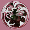 Spider Lily Orb by Bill Barber