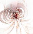 Spiderlily by Amanda Moore