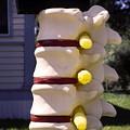 Spine Mailbox by Sally Weigand