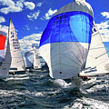 Spinnakers And Sails By Kaye Menner by Kaye Menner