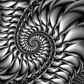 Spiral Down Fractal Poster by David Smith
