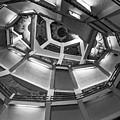 Spiral Up by Tina Ernspiker